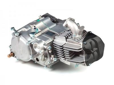 Motorblok, 190cc, handkoppeling, Daytona Anima FD5, 5-bak