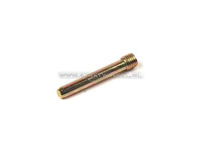 Caliper pin